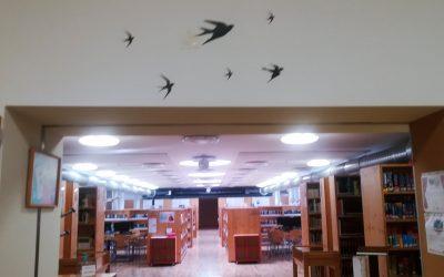 Escolas fechadas, bibliotecas abertas – a BAP na ESFRL